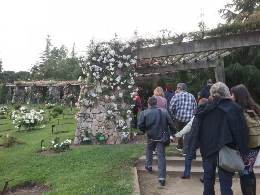 Com Funciona Barcelona? L'art de visitar un jardí: el Roserar del Parc de Cervantes