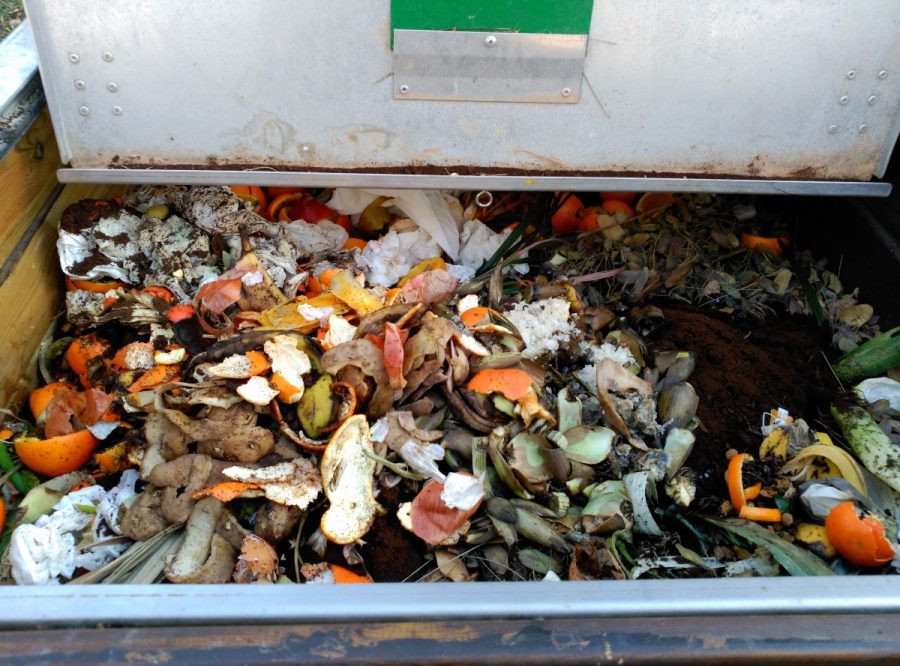 Interior compostador