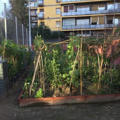 Horts i compostadors