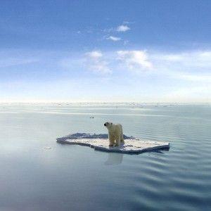 Tots podem fer alguna cosa per aturar l'escalfament global