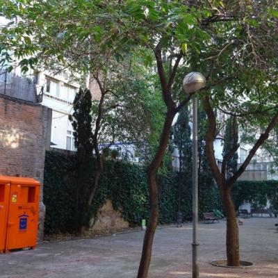 Contenidors de roba usada, bancs, arbres d'orquídees, mur d'heure