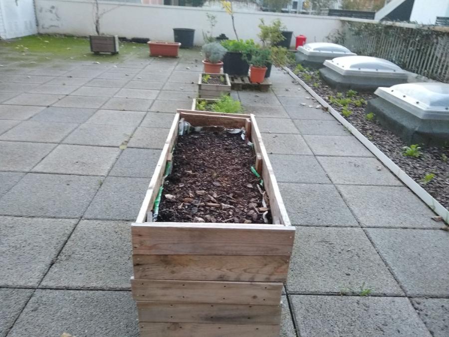Hort comunitari i espai de compostatge