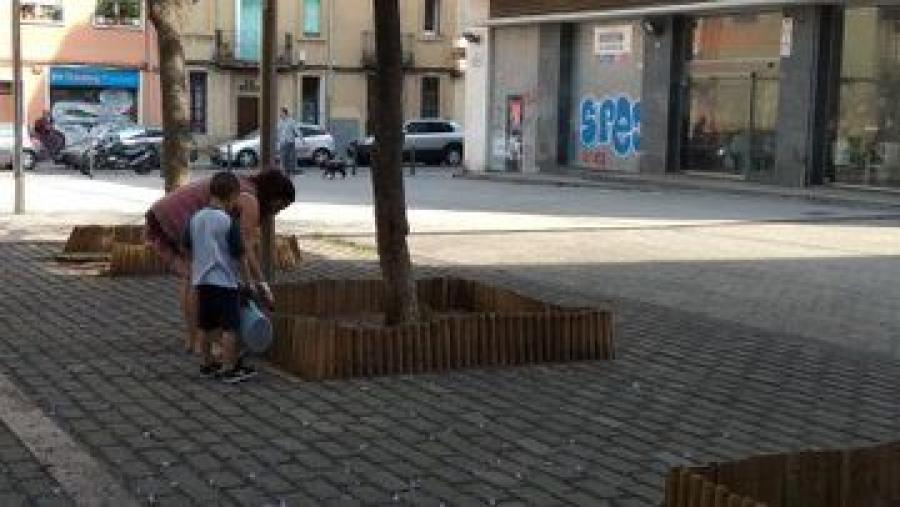 escocells comunitaris