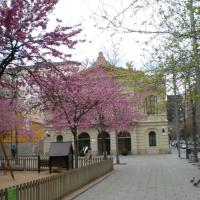 Plaça Comas