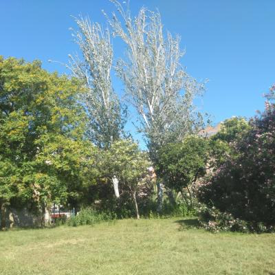 Mostra de biodiversitat dels jardins